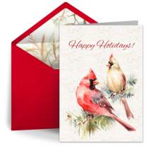 Winter Cardinal Thanks card image